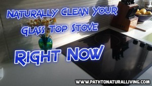 Naturally Clean Glass Top Stove