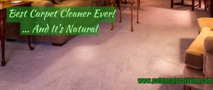 Best Carpet Cleaner Ever