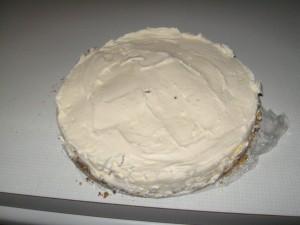 Homemade Ice Cream Cake Recipe Layer