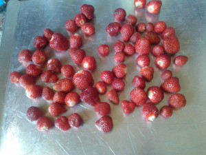 Freeze Strawberries Flat