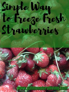 Simple Way to Freeze Fresh Strawberries