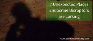7 Unexpected Places Endocrine Disruptors are Lurking
